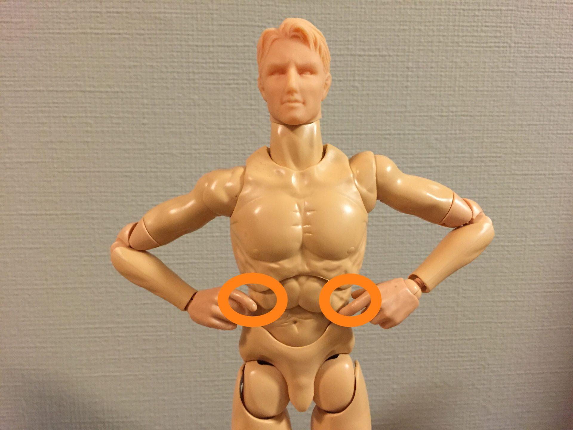 体幹トレーニングと腰痛、肩こりの関係