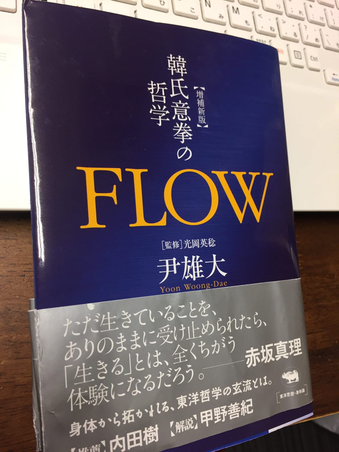 韓氏意見の哲学 FLOW